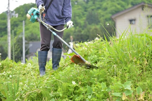 長野市で草刈りに最適な年3回の時期~楽に草刈りを終えるコツまで徹底解説